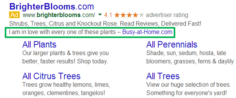 Adwords Review Extension In Action